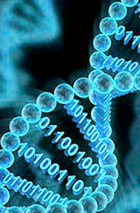 Illinois is leading a new center with colleagues at Mayo Clinic and the Center for Computational Biotechnology and Genomic Medicine (CCBGM) that seeks to develop a new platform for generating, interpreting, and applying genomic data for a wide variety of applications.