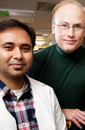 Microbiology professor Steven Blanke, right, doctoral student Prashant Jain, and a colleague at Purdue University found a mechanism linking Helicobacter pylori infection, impairment of the mitochondria and cell death.