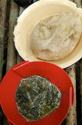 Gozo, bitter manioc root (top) and Koko leaves (bottom) (Gnetum africanum) in peanut sauce, two staple foods in the region.