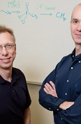 IGB faculty members Wilfred van der Donk and William Metcalf and colleagues discovered the origin of much of the methane in the oxygen-rich regions of the ocean.