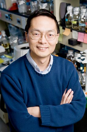 The newly established Global Biofoundry Consortium, led by Professor of Chemical and Biomolecular Engineering Huimin Zhao, looks to develop biofoundries for accelerated biological engineering and fundamental research.