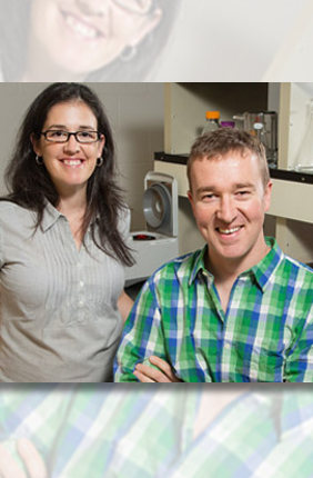 Chemical and biomolecular engineering professor Brendan Harley (r) with postdoc Sara Pedron found a way to adjust the malignancy of brain cancer cells in a newly developed polymer gel that mimics conditions in the brain.
