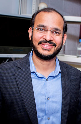 University of Illinois biochemistry professor Auinash Kalsotra