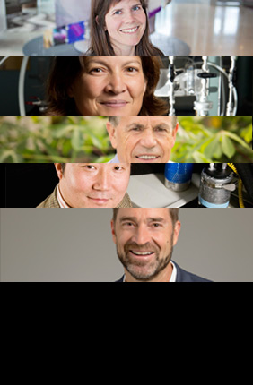 Five Illinois researchers rank among world's most influential