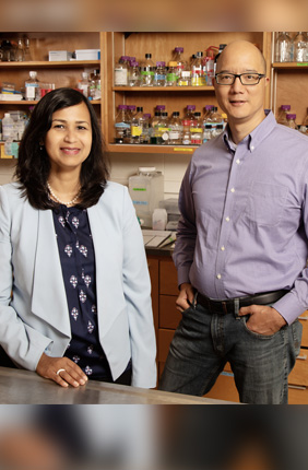 Comparative biosciences professor Aditi Das and veterinary clinical medicine professor Timothy Fan found that a class of molecules that form when the body metabolizes omega-3 fatty acids may prevent cancer from migrating.