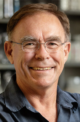 A new study from Illinois entomology professor Hugh Robertson and colleagues at the University of California, Davis reveals that all insects have odorant receptors that enable them to detect airborne chemicals.