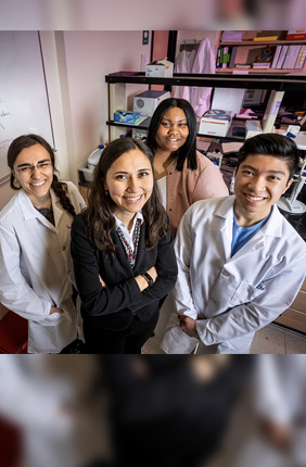 Targeting estrogen receptor-positive breast tumors with the XPO1 antagonist selinexor and the tamoxifen byproduct 4-OHT simultaneously rewires the cells' metabolism to overcome endocrine resistance, University of Illinois researchers  found in a new study. The team, from left, graduate student Eylem Kulkoyluoglu-Cotul, food science and human nutrition professor Zeynep Madak-Erdogen, graduate student Brandi Patrice Smith and undergraduate student Kevin Duong.