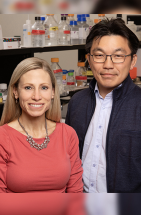 U. of I. kinesiology and community health professor Marni Boppart, chemical and biomolecular engineering professor Hyun Joon Kong and their colleagues discovered that injections of support cells known as pericytes can aid muscle regrowth after disuse atrophy. The study was conducted in mice.