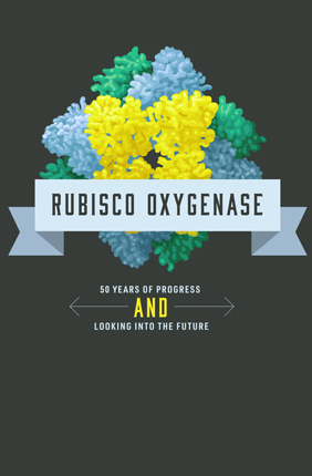 Rubisco Oxygenase: 50 Years of Progress and Looking Into the Future