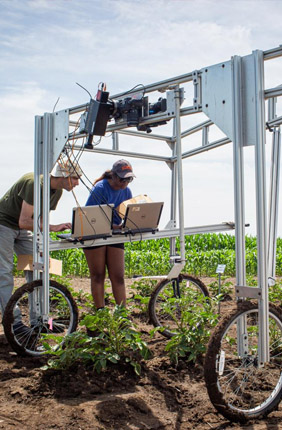 University of Illinois Research Technician Evan Dracup (left) uses hyperspectral cameras to screen whole research plots for high-yielding photosynthesis traits.