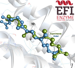 Computational Strategies for Enzyme Discovery