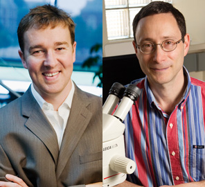 Illinois faculty including Brendan Harley and Phillip Newmark elected 2014 fellows of the American Association for the Advancement of Science.