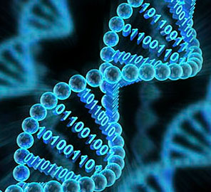 New center to apply computing to large-scale genomic problems