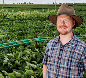 New research led by plant biology professor Andrew Leakey contradicts hypothesis about how climate change will affect food production.