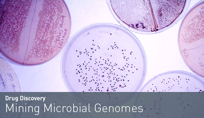 Mining Microbial Genomes
