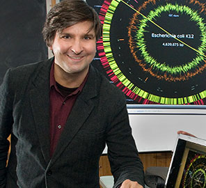 Professor of Bioengineering Sergei Maslov with colleagues had developed a platform to assess E. coli strains faster and more efficiently.
