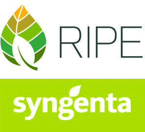 Illinois and Syngenta Crop Protection, LLC, have signed an agreement to implement a commercialization strategy for IP developed under the Gates RIPE project.