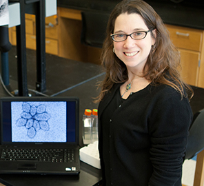 Microbiologist Rachel Whitaker and team explore the idea of viruses and their hosts coevolving together, using the model system of hot springs at Yellowstone National Park.