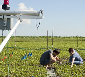 Team calls for integrated Midwest field research network
