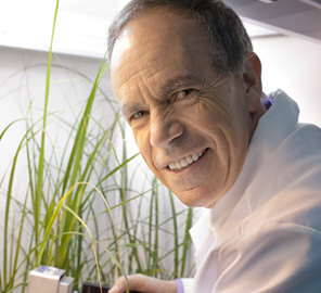 Plant biologist Steve Long ponders strategies to recruit the next generation of researchers.