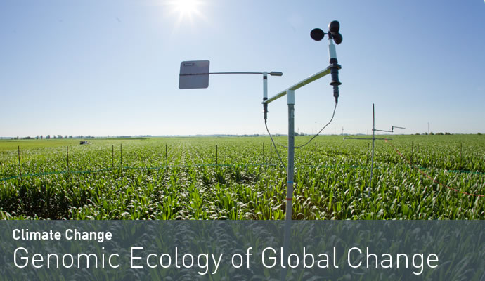 Genomic Ecology of Global Change