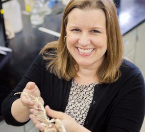 Karen Sears, Associate Professor at the School of Integrative Biology and IGB Faculty Member