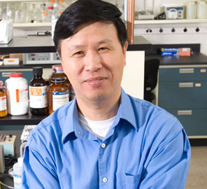 Professor Ning Wang led a team that found that tumor-repopulating cancer cells can go dormant in stiffer tissues but wake up and multiply when placed in a softer environment.