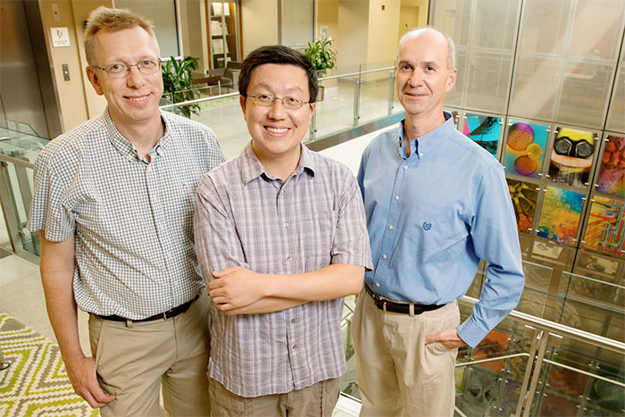 University of Illinois chemistry professor Wilfred van der Donk (left), postdoctoral researcher Kou-San Ju, microbiology professor William Metcalf and their colleagues used genome mining to discover many new natural products quickly and inexpensively.