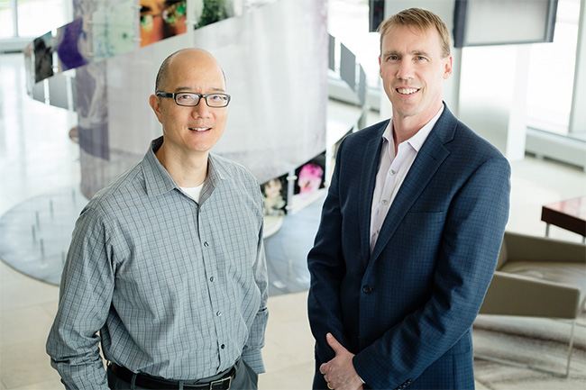 Chemistry professor Paul Hergenrother, right, and veterinary clinical medicine professor Timothy Fan tested an anti-cancer compound in pet dogs that is now being used in human clinical trials.