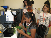 Photo of students using lab equipment during GAMES event.