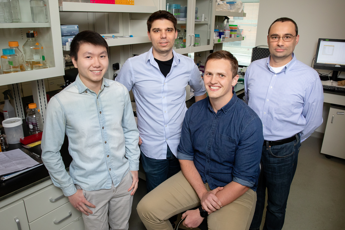 Illinois researchers demonstrated a CRISPR gene-editing technique that slowed the progression of ALS in mice. Pictured, from left: graduate student Colin Lim, professor Thomas Gaj, graduate student Michael Gapinske, professor Pablo Perez-Pinera.
