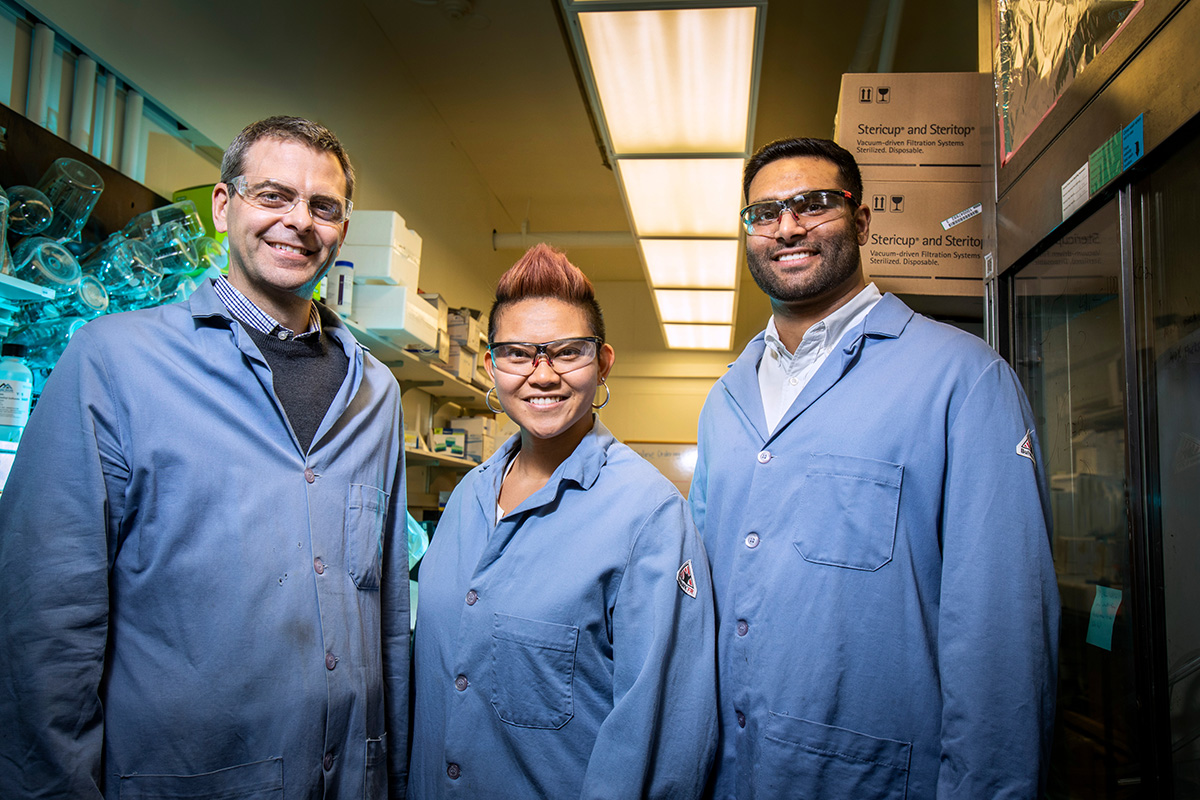 The Illinois team specializes in molecular prosthetics, small molecules that could do the job of missing or deficient proteins. Pictured: Professor Martin Burke and graduate students Katrina Muraglia and Rajeev Chorghade.