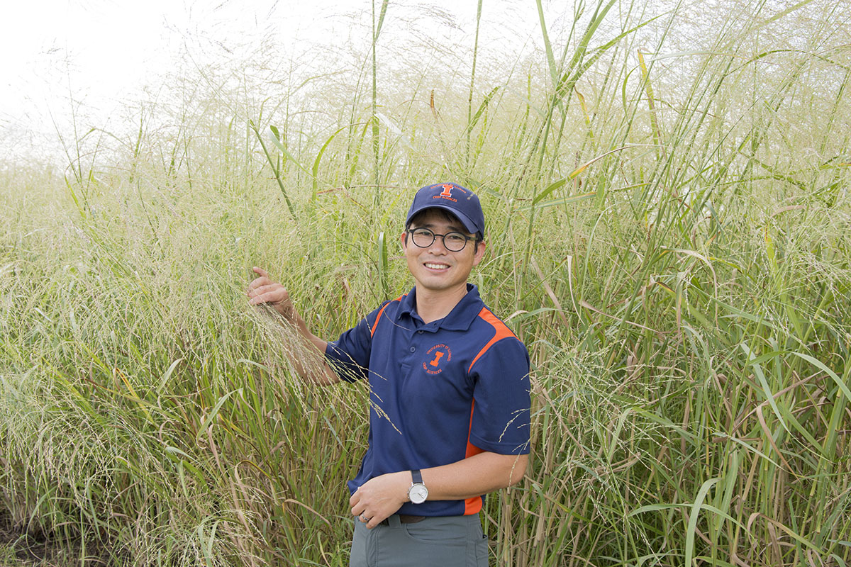 University of Illinois Crop Sciences Associate Professor D.K. Lee on the Illinois Energy Farm with the 'Independence' switchgrass variety he developed.
