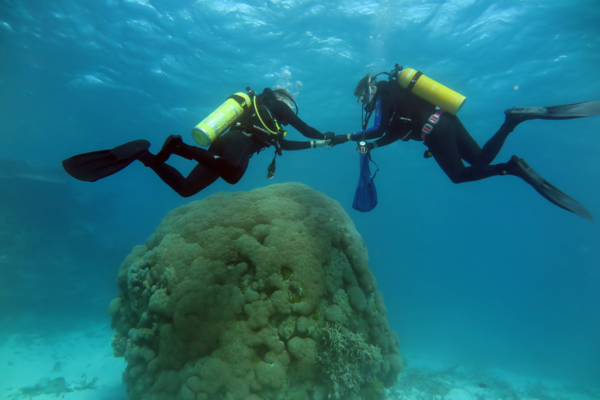 Co-authors Bruce and Kyle Fouke collecting Porites biopsy samples at 10 meters depth at Myrmidon – the most seaward reef of the Great Barrier Reef, located 124 km off the coast of northeastern Australia.