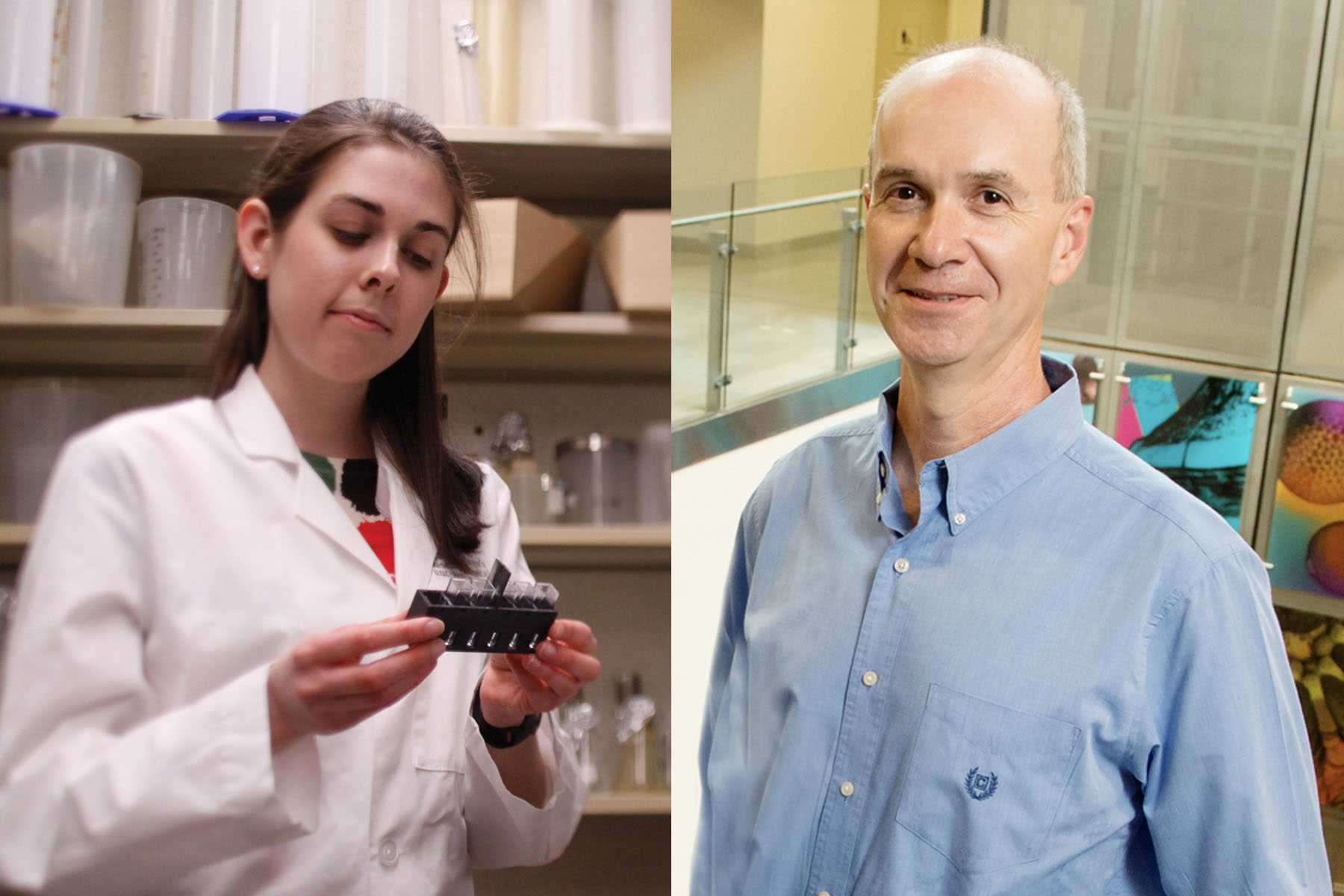 Genome mining reveals novel production pathway for promising malaria treatment