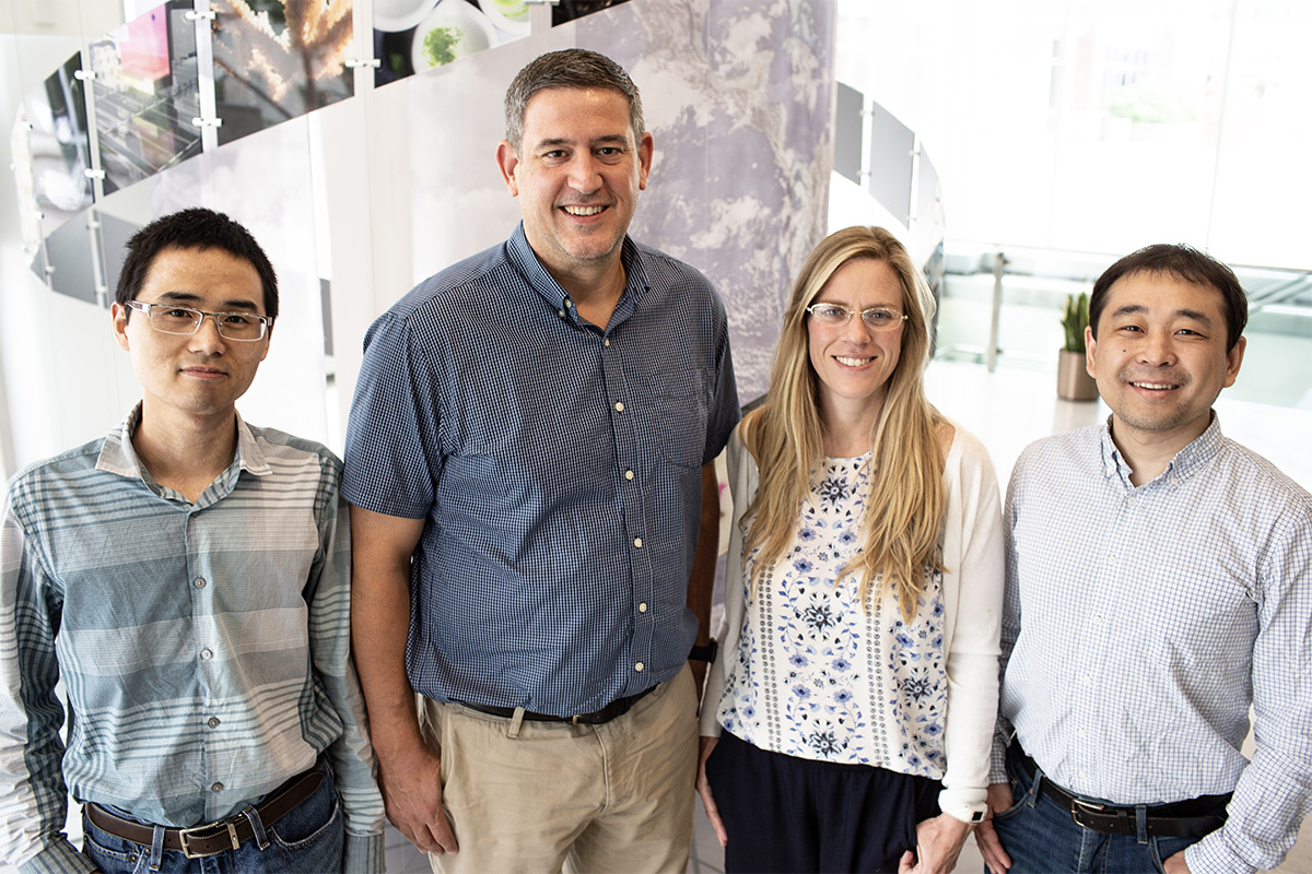 A team from the University of Illinois has stacked together six high-powered algorithms to help researchers make more precise predictions from hyperspectral data to identify high-yielding crop traits. From left to right: Postdoctoral Researcher Peng Fu, USDA-ARS Scientist Carl Bernacchi, Postdoctoral Researcher Katherine Meacham-Hensold, and Assistant Professor Kaiyu Guan. Credit