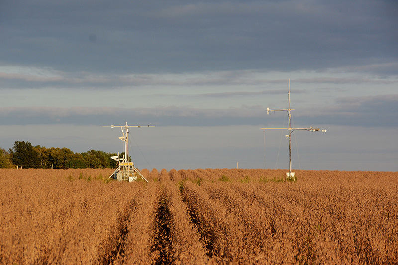 Scientists evaluate the photosynthetic performance of soybeans using these towers, which use hyperspectral cameras to capture light invisible to the human eye that may one day help us predict yield on a grand scale.