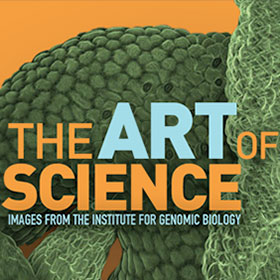 Art of Science 1.0